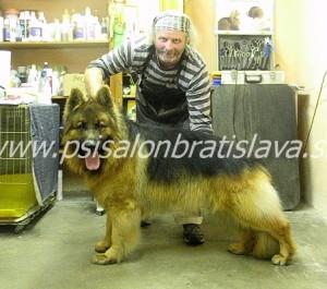 Peter Skržek